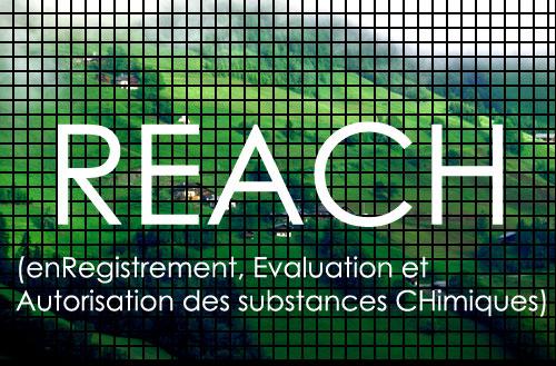 reach-cd141