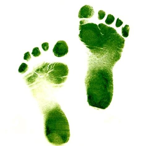 green-footsteps-ii